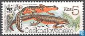 WWF-amphibiens