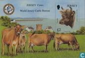 Confentie Jersey cattle