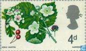 Postzegels - Groot-Brittannië [GBR] - Bloemen - fosfor