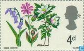Timbres-poste - Grande-Bretagne [GBR] - Fleurs - phosphore