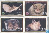 WWF-Rhinolophe Euryale