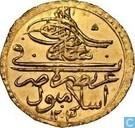 Türkei 1 Zeri Mahbub 1793 (1203-5)