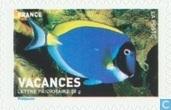 timbres pour vacances