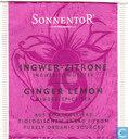 19 INGWER - ZITRONE Ingwer-Gewürztee | GINGER LEMON Ginger-Spice Tea