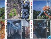2006 Pico- wijn (AZO 77)