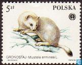 Fourrure-animaux protégés