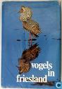Vogels in Friesland I