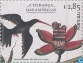 2007 Amerikaanse import (POR 903)